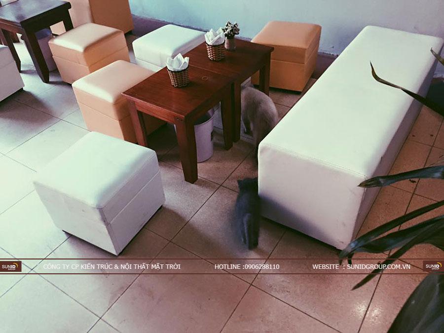 Thiết kế thi công quán cafe mèo đẹp độc đáo
