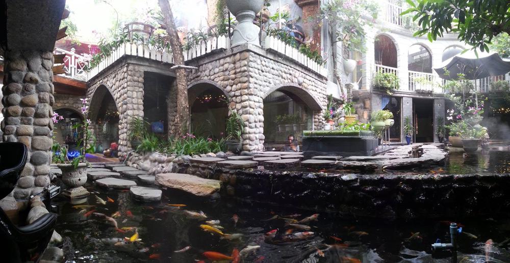 thiết kế quán cafe sân vườn oasis ảnh 1