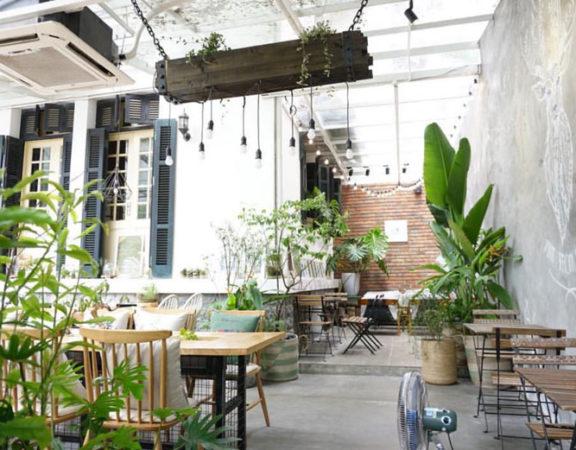 mẫu quán cafe cây xanh