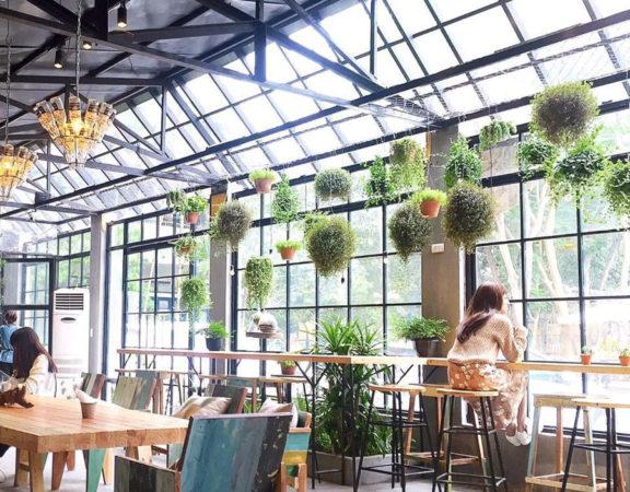 thiết kế quán cafe độc đáo